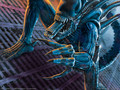 wallpaper_aliens_vs_predator_2_09_1600
