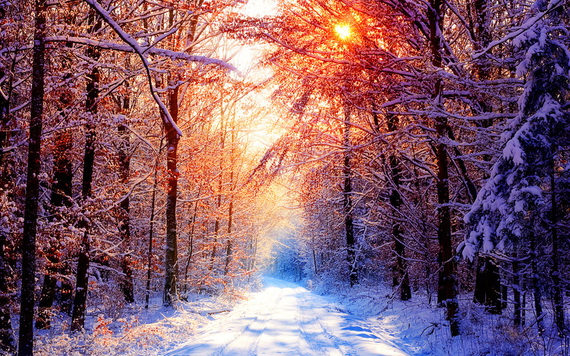 iWallpaper-Hiver-Collection (22).jpg