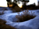 iWallpaper-Hiver-Collection (13)