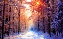 iWallpaper-Hiver-Collection (22)