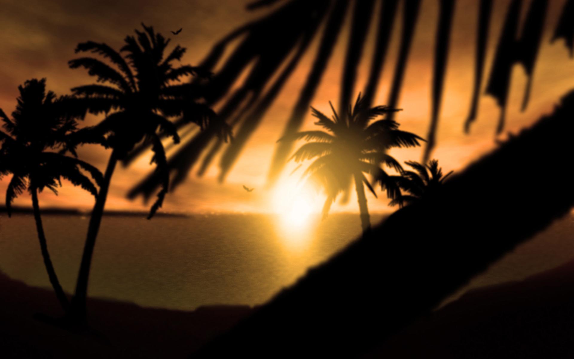 Coucher de soleil fond d 39 cran hd 6 10 000 fonds d for Ecran de fond hd