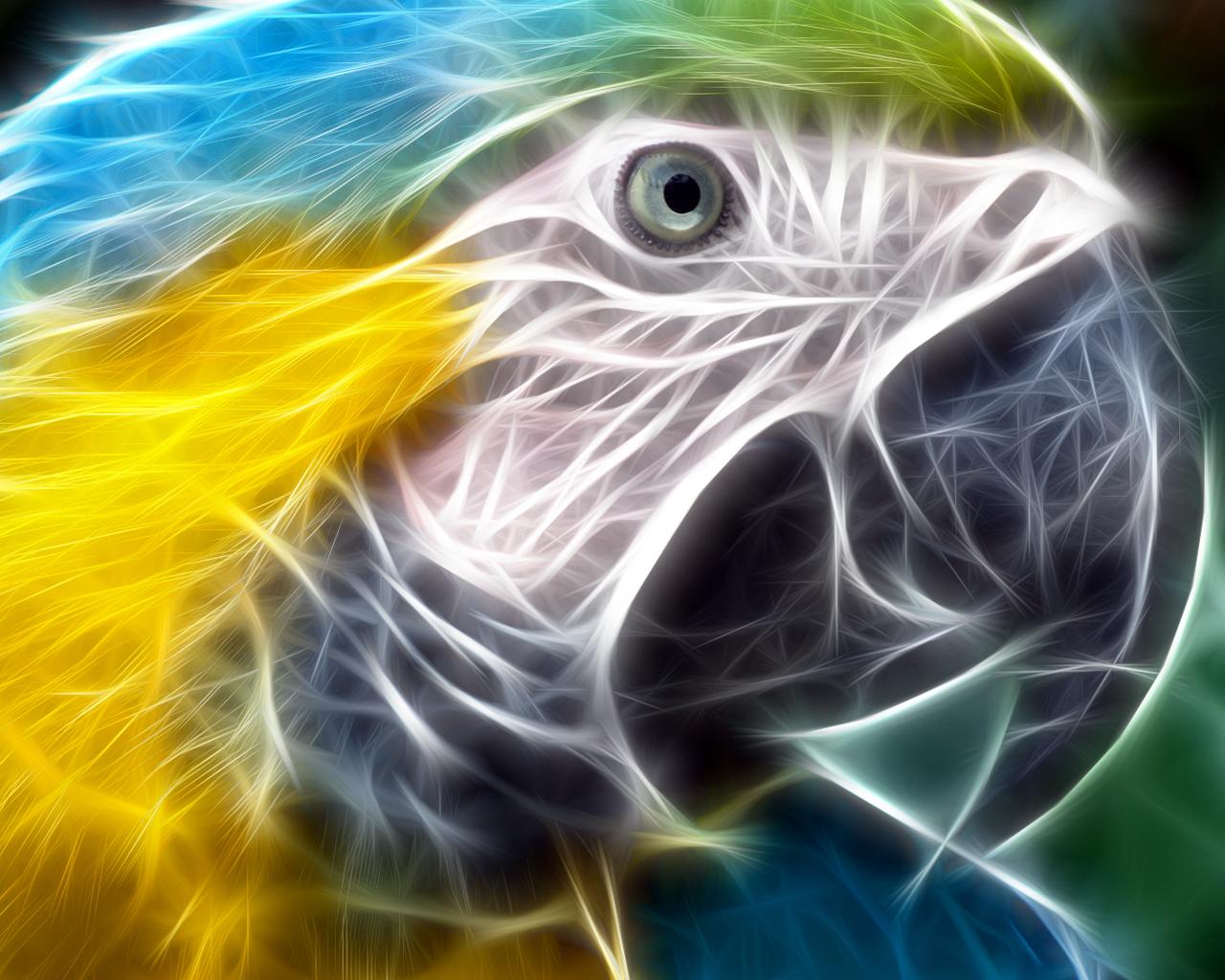 3d animaux iwallpapers 29 10 000 fonds d 39 cran hd for Fond ecran animaux hd