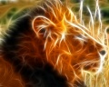 3D Animaux iWallpapers (28)