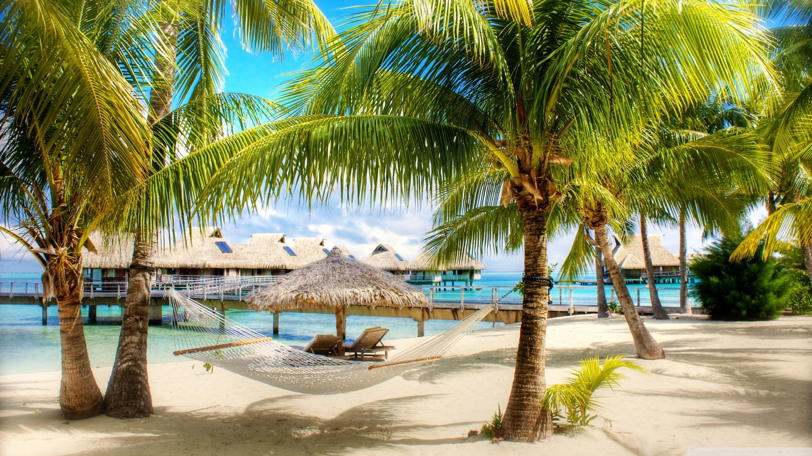 tropical beach resort-wallpaper-1600x900 - 10 000 Fonds d'écran HD gratuits et de qualité ...