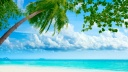tropical beach resorts-wallpaper-1600x900