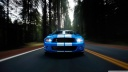 ford shelby blue-wallpaper-1600x900