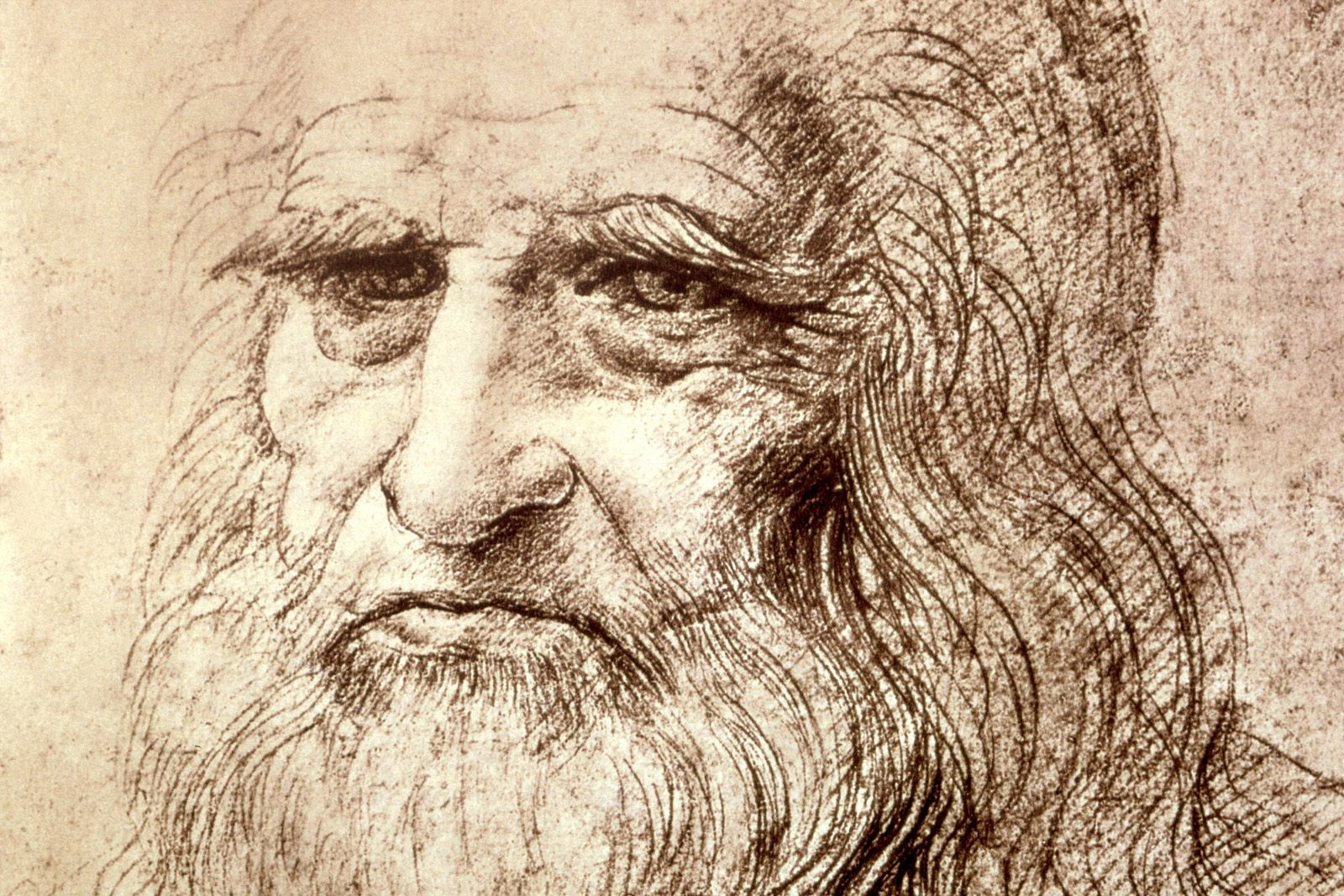 Leonardo-da-Vinci-Wallpapers-auto-portrait.jpg
