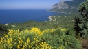 South Coast, Ukrainian Riviera on the Black Sea, Crimea, Ukraine