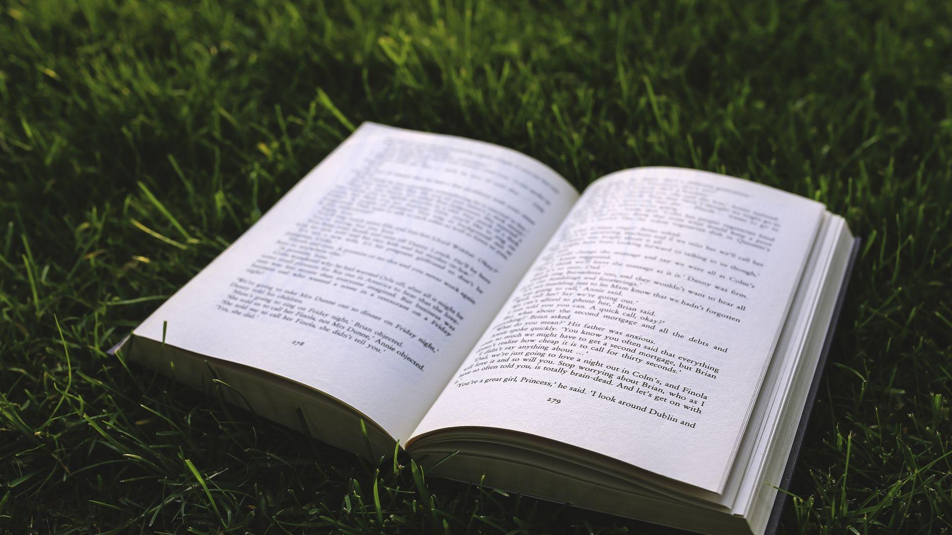 Livre Herbe 10 000 Fonds D Ecran Hd Gratuits Et De Qualite